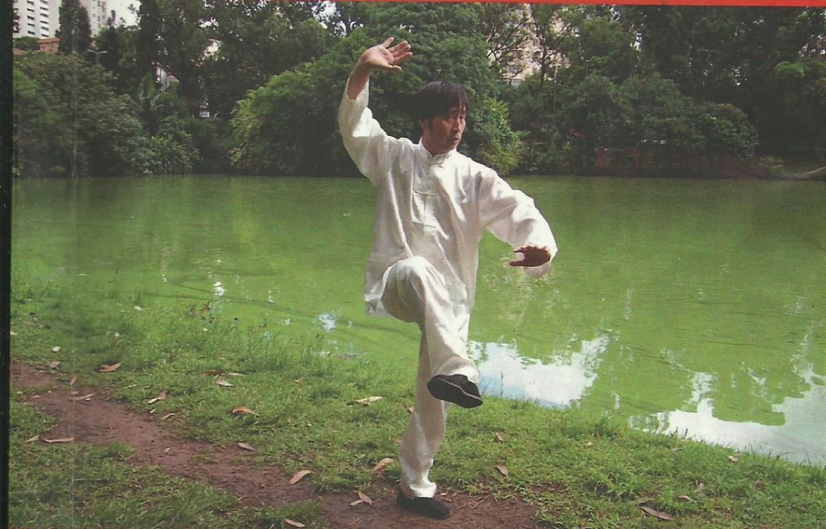 mestre Cai Wen Yu 200bpi